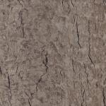 M49952 Macaroon Woodburst